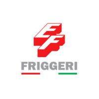 ELETTRO APPARECCHIATURE FRIGGERI S.R.L.